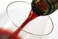 Vin de Buisson (prunelier)
