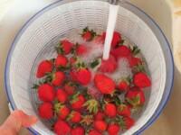Salade de fraises, verveine - Instruction 0