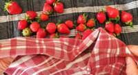 Salade de fraises, verveine - Instruction 1