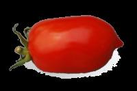 "Tomate ""Pendelotte"""